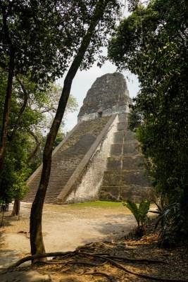 Intrepid Escape - Tikal Mayan Ruins Guatemala (4)