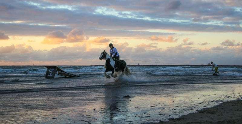 Horseboarding World Cup