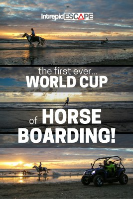 Horse Boarding World Cup