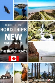 New Brunswick Bucket list road trip - Intrepid Escape