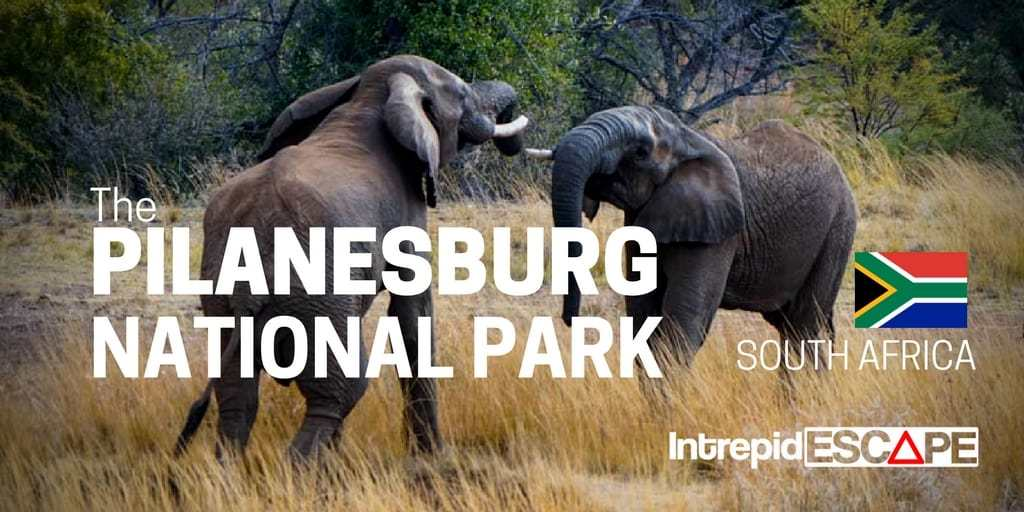 Pilanesburg National Park