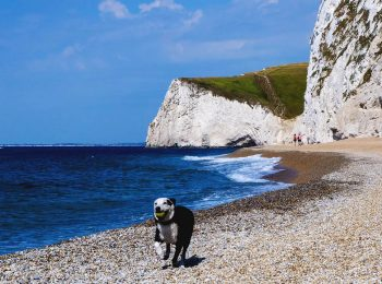 Camping on the Dorset Jurassic Coast with Go Outdoors
