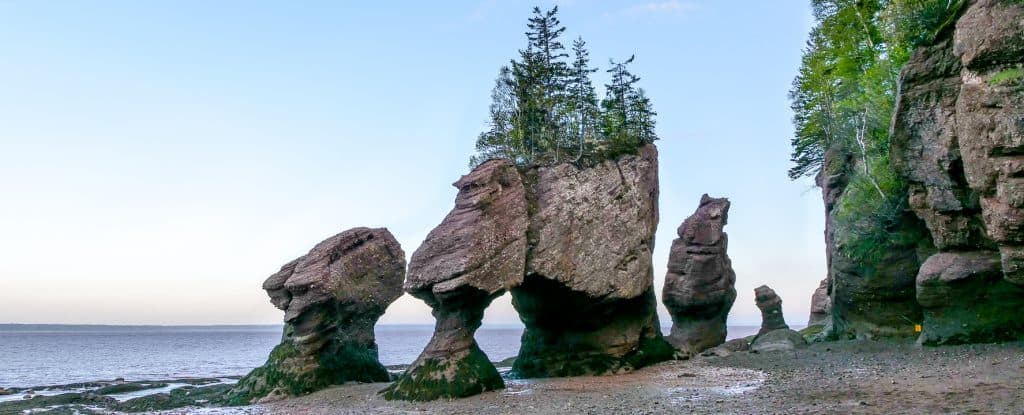 Hopewell Rocks photography guide facts - Intrepid Escape